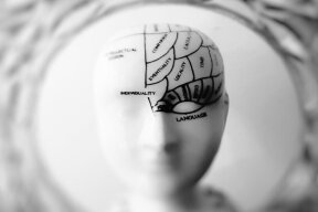 Article: What can you do with a Psychology degree?